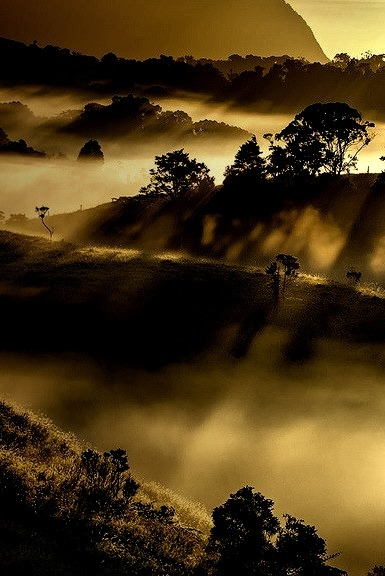 Shadows in the mist on the Atherton Tablelands, Queensland, Australia