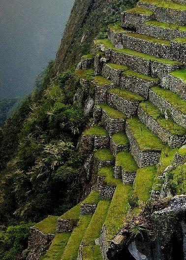 The inca terraces of Machu Picchu / Peru
